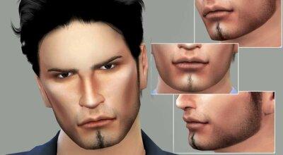 Мужская бородка N5