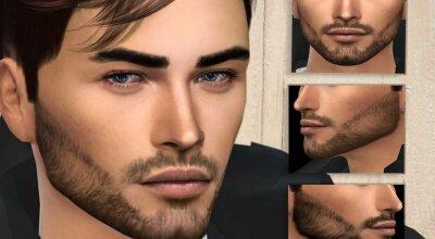 Борода N01