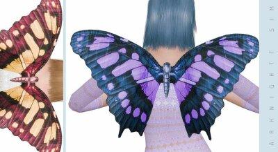 Крылья бабочки Butterfly