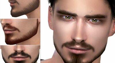 Борода N52