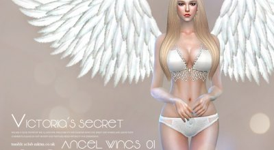 Крылья ангела 01