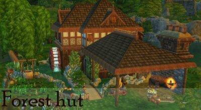 Лот Forest hut