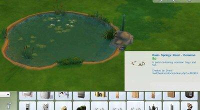 Покупка прудов