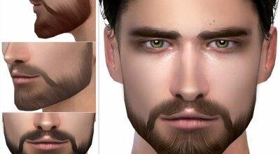 Борода N56