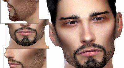 Борода N20